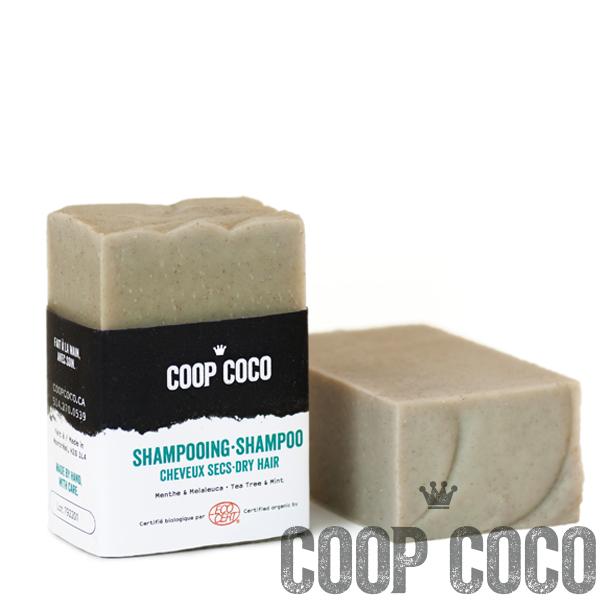 Shampoo Dry 110g