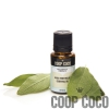 Sage Essential Oil