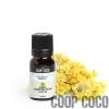Helichrysum Organic Essential Oil